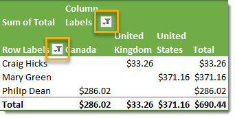 Pivot-Table-with-Multiple-Filters 101 Advanced Pivot Table Tips And Tricks You Need To Know